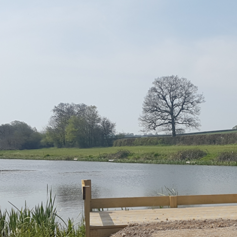 Witham Friary Lakes